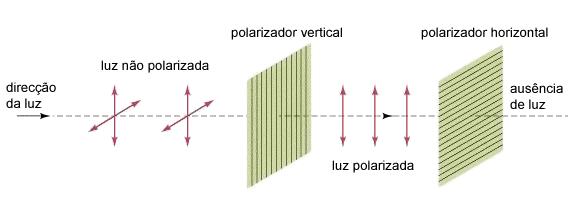 Luz a atravessar um polarizador vertical seguido de um polarizador horizontal.