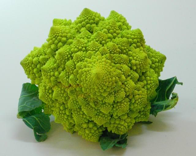 Uma qualidade especial de brócolos chamada romanesco.