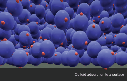 Colloid adsorption to a surface.
